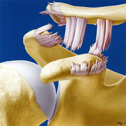 articulația umflată și dureroasă a degetului mic faceți clic pe toate tratamentele articulațiilor